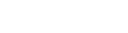 executive leaders sport and recreation programme Puna nz